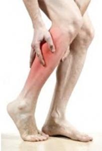vascular2